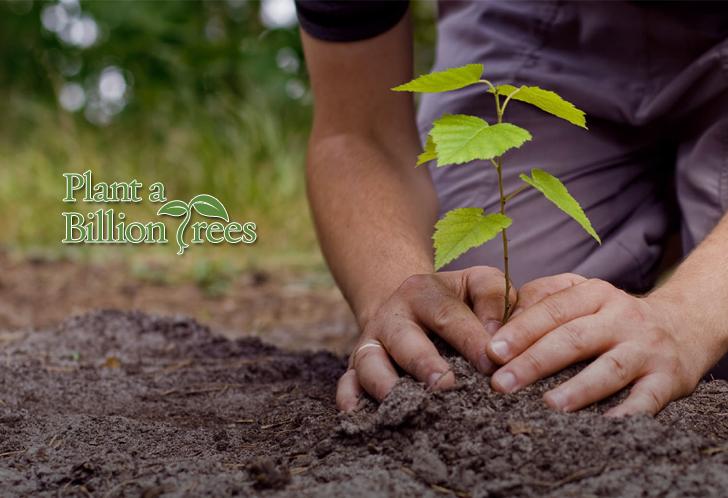 plant-a-billion-trees