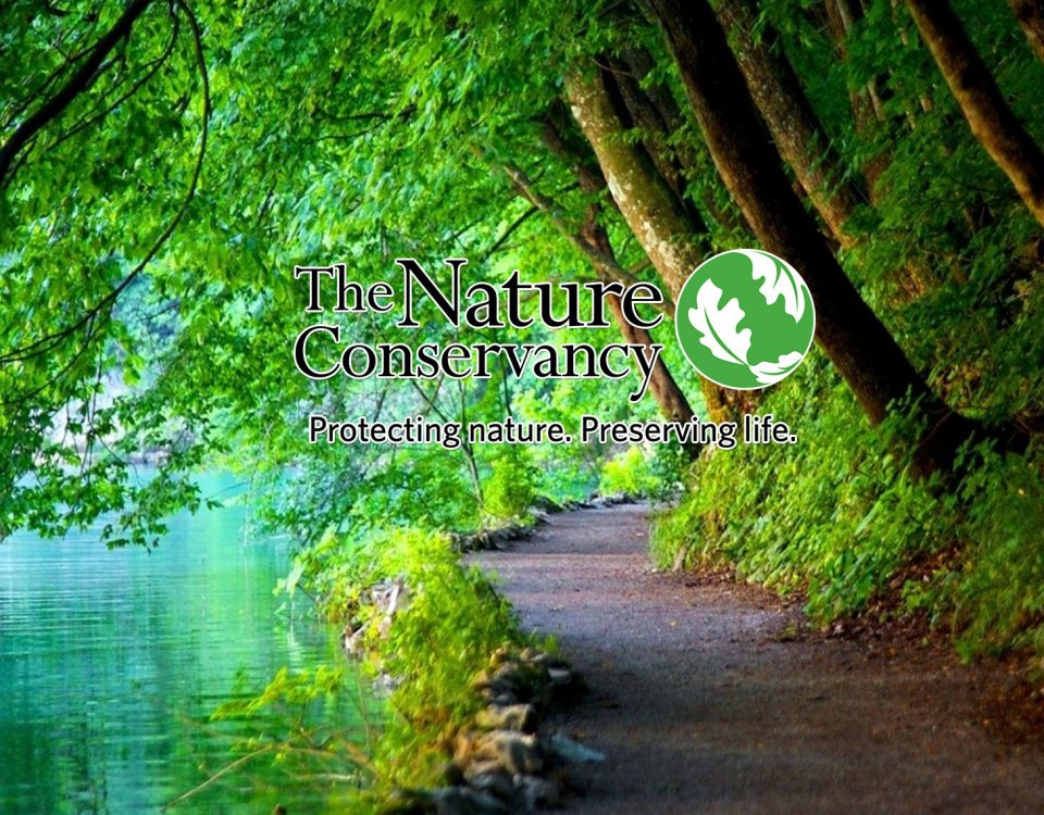 Nature Conservancy Foundation